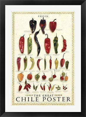 The Great Chile Poster - The Great Chile Poster [fresh] by Mark Miller Framed Art 30x42
