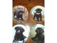 Danbury Mint ~ a puppies first year ~ by John Silver