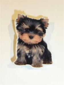 ACRYLIC BROOCH - YORKSHIRE TERRIER PUPPY - FREE UK P&P.......CG2123