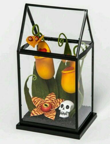 💀 Hyde & Eek Boutique Yellow Creepy Face Halloween Faux Plants Small Terrarium