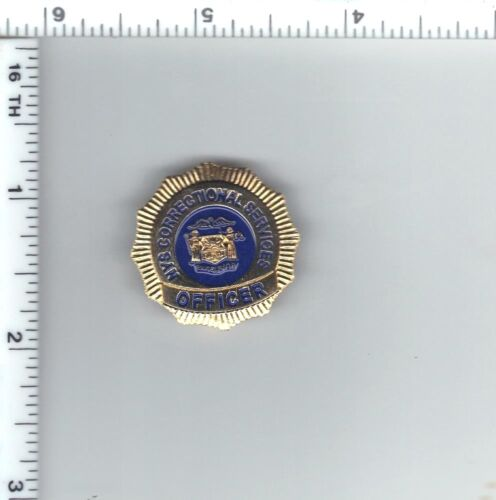New York State Department of Correctional Services (DOCS) Officer Mini Pin