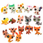 Littlest Pet Shop Huge Lots