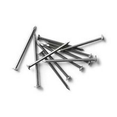 17 X 1 Stainless Steel Wire Nails 2 Oz. Pack