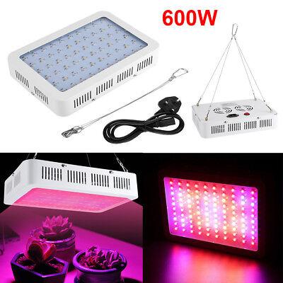 600W High Luminous LED Grow Light Panel For Plants Vegetative Flower Bloomer UK