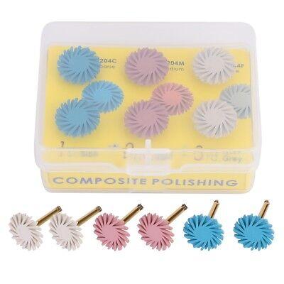 6pcs High Quality Dental Composite Polishing Disc Kit Spiral Flex Brush Burs New