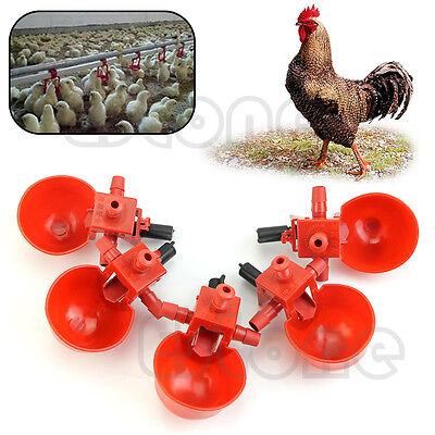 5Pcs Bird Coop Feed Automatic Poultry Water Drinking Cups Chicken Fowl Drinker ()