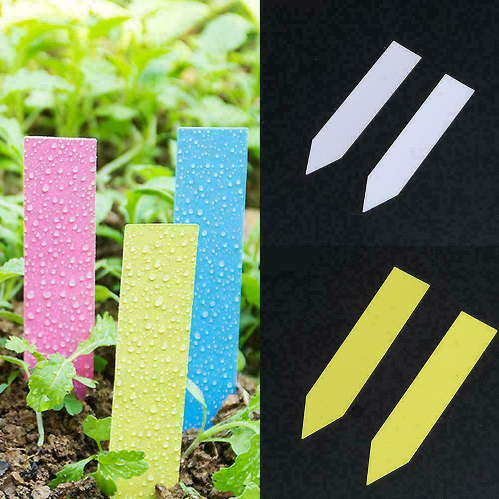 100Pcs Ring Plastic Plant Seed Labels Pot Marker Nursery Garden Name Tags White