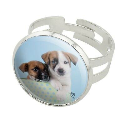 Jack Russell Terrier Puppies Dogs Gift Box Silver Plated Adjustable Novelty Ring for sale  Shipping to Canada