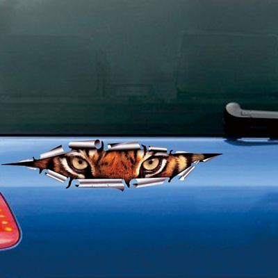 Lustige Auto 3D Augen Spähen Tiger Aufkleber Voyeur