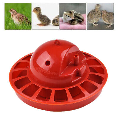 Rite Farm Products Auto Pro Chick Waterer Poultry Baby Chicken Drinker Automatic