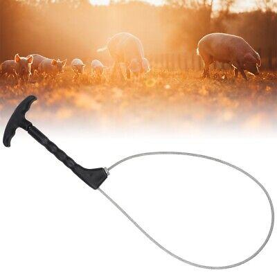Stainless Steel Trap Pig Holder Catcher Pig Livestock Snare Farming Equipment