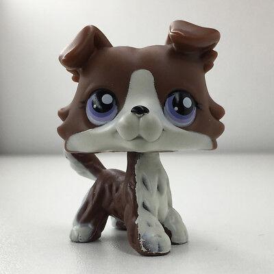 LPS Littlest Pet Shop Toys Brown White Collie Dog Purple Eyes Puppy Kid Toy Gift