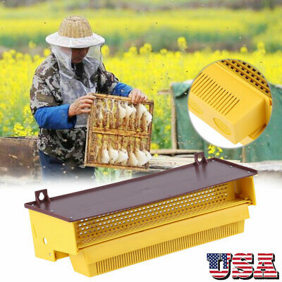 Removable Beekeeping Pollen Trap Collector For Apiculture Beekeeping Tools