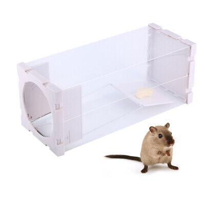 Ratón humano reutilizable Trampa para ratas Captura en vivo Plagas Roedores
