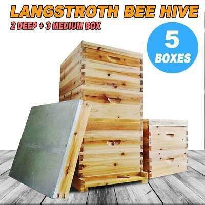5 Board Box 10-frame Beehive Frames Bee Hive Frame Fit Beekeeping W Metal Roof
