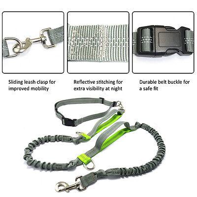 Adjustable Hands Free Leash Dog With Waist Belt For Jogging Walking Running