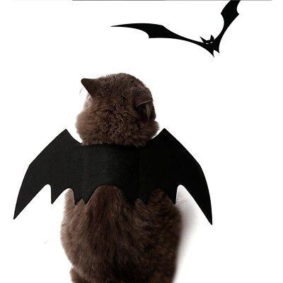 Haustier Hund Katze Schwarz Fledermausflügel Halloween Nette Bat Wings Kostüm (Fledermaus Flügel Kostüm Hund)