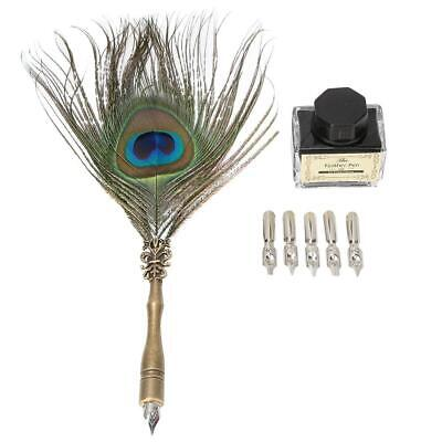 Calligraphy Peacock Feather Dip Quill Pen Writing Ink Bottle Kit Best
