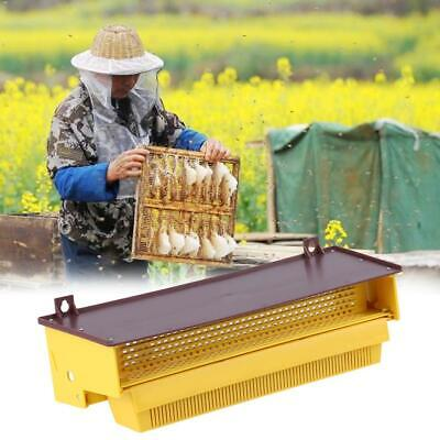 Plastic Bee Pollen Trap Collector For Apiculture Beekeeping Tools Beehive Usa