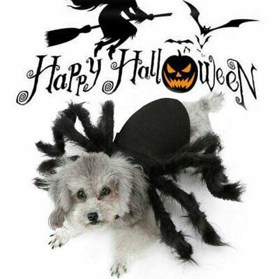 Hundekostüm Spinne Halloween Spinne Haustier Kostüme Outfit Kleidung Pelz - Pelz Kostüm Halloween