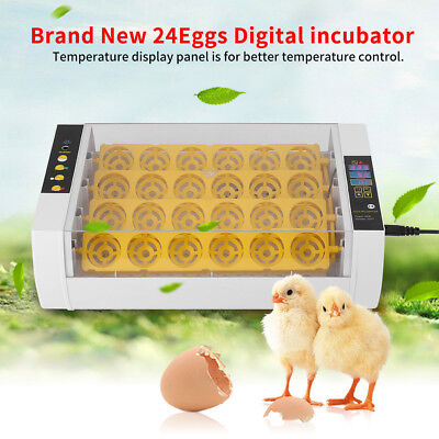 24 Egg Mini Incubator Hatcher Bird Chicken Duck Auto Turning Home Farm Poultry