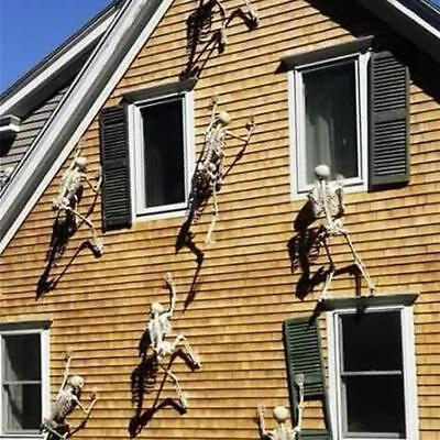 Halloween Props Luminous Human Skeleton Hanging Decoration Outdoor Party US - Plastic Skeleton