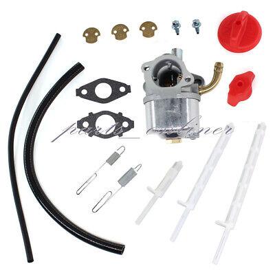 Carburetor for Briggs & Stratton 798917 695727 790558 791292 791953 794587 Carb