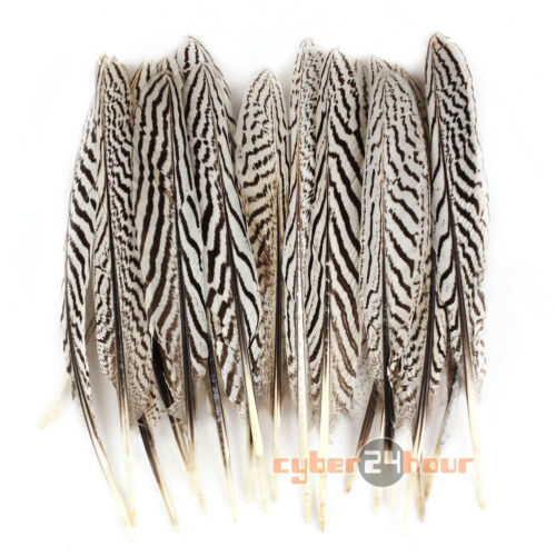 "20 X DIY Beautiful Natural Pheasant Feathers 3/"" 4/"" Sewing//Costume//Millinery//Hat"