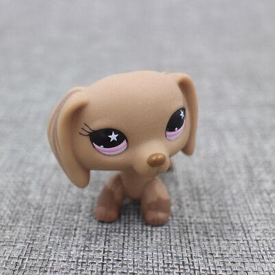 #932 LPS Littlest Pet Shop Toys Brown Tan Dachshund Hot Dog Birthday Toys  Gift