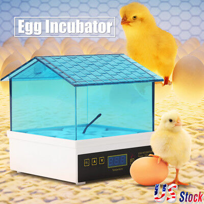 4 Egg Incubator Digital Auto Turner Chicken Poultry Bird Quail Clear Hatcher US