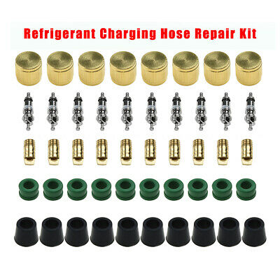Refrigerant Charging Hose Repair Kit Cap Core Tool Set W 1438 Gaskets Hvac