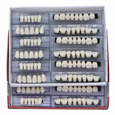 Us 168pcs Dental Acrylic Resin Denture Teeth 22 A2 Shade Full Set Upper Lower