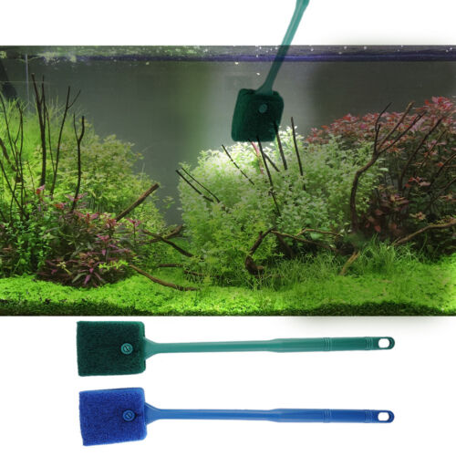Aquarium fish tank algae cleaner glass plant easy 2 head for How to remove algae from fish tank glass