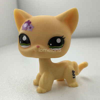 LPS#1962 Littlest Pet Shop Purple Flowers Green Eyes Kitten Cream Shorthair Cat