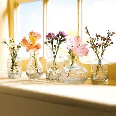 "Art & Artifact 5 Pc Glass Vase Set -Fun Shapes Clear Glass Vases, 2 3/4""-3 3/4""H"