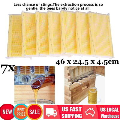 7 Pcsset Clear Comb Beehive Auto-flowing Honey Frames Beekeeping Harvesting
