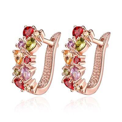 (Women's 10KT Yellow Gold Filled Ruby/Peridot/Amethyst Drop/Dangle Hook Earrings)