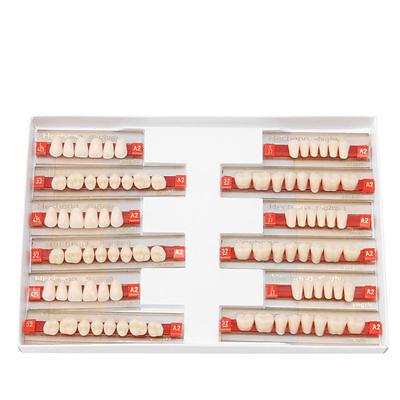 3 Set Of 841 Full Mouth Denture Dental Acrylic Resin Teeth A2 L425 32u37