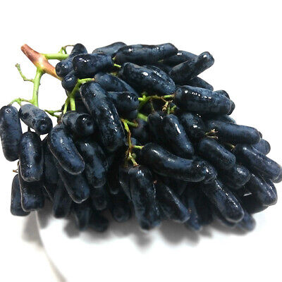 100x Black Finger Grape Seeds Delicious Fruit Plant Garden Bonsai Roof Decor Mgi Home & Garden