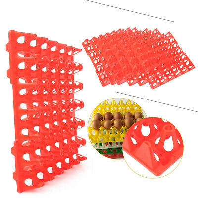 6 Packs Egg Trays For Incubator Storage Holds 30 Poultry Turkey Duck Peafowl Red