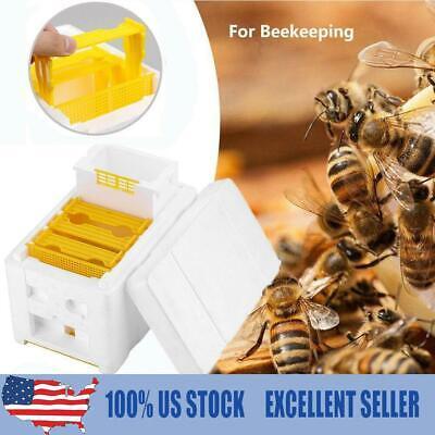 Harvest Bee Hive Beekeeping King Box Foam Frames Pollination Box Beekeeping Tool