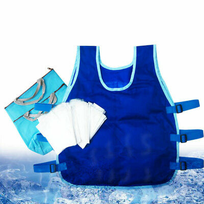 Outdoor Cooling Vest Heatstroke Prevention Vest Cooling Suit for Restaurant