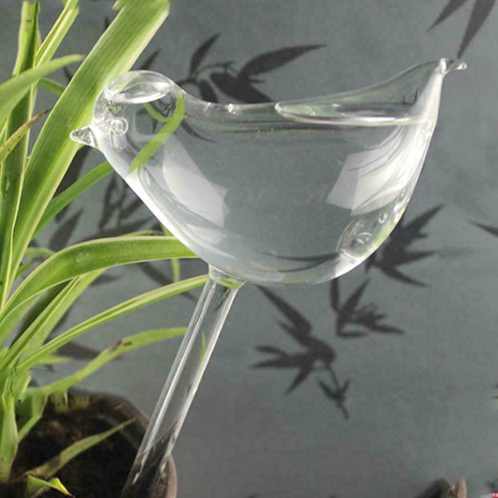 Self Watering Globe Plant Water Bulbs Hand Blown Transparent