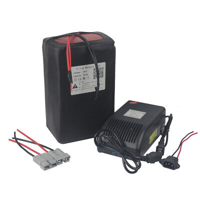 48v 30Ah Lithium ion Battery Packs Power for E-Bike Scooter + BMS + Charger