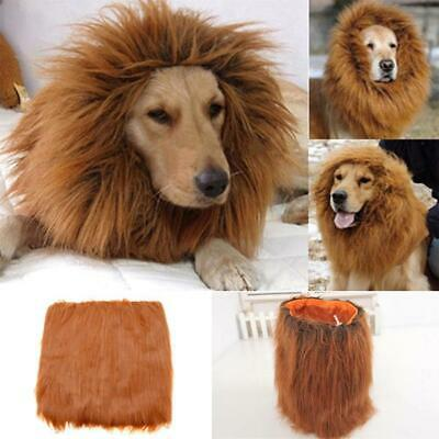 Pet Clothes Halloween Dog Costumes Lion Mane Wig for Large Dogs Fancy Dress (Fancy Hunde Kostüm)