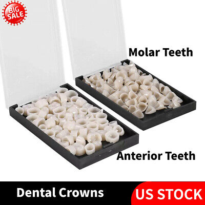 Dental Temporary Crown Material Anterior Teethmolar Teeth Dental Crowns New