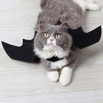 Haustier Hund Katze Schwarz Fledermausflügel Cosplay Bat Wings Kostüm Party (Schwarze Katze Fledermaus Kostüm)