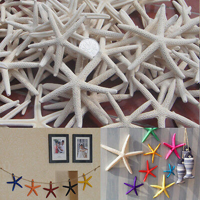 "12 Pcs Beautiful White Finger Starfish 8-10"" Beach Wedding Coastal Decor Crafts"