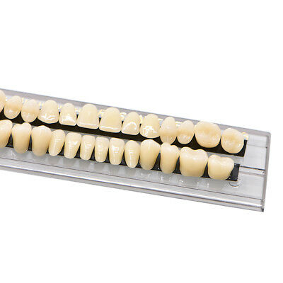 280pc 10set Dental Denture Acrylic Resin Full Set Teeth Upper Lower Shade 23 A3