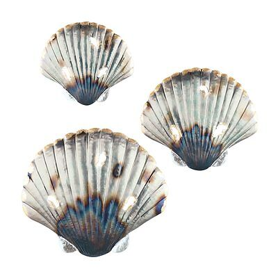 Set of 3 Metal Seashell Hanging Wall Art Beach Coastal Ocean Inspired Decor